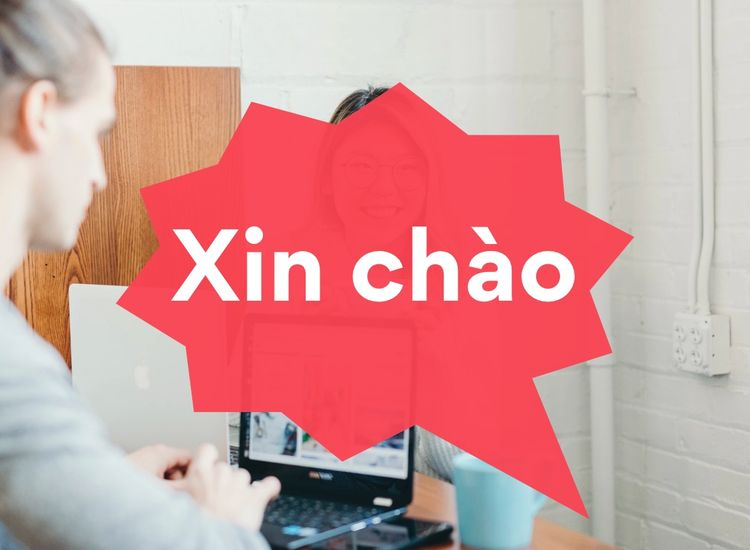 Vietnamese Translation