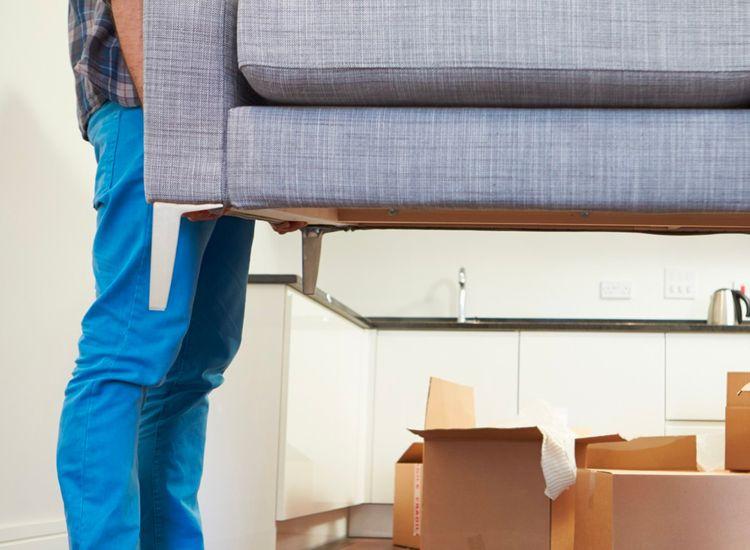 Removals & Property Management